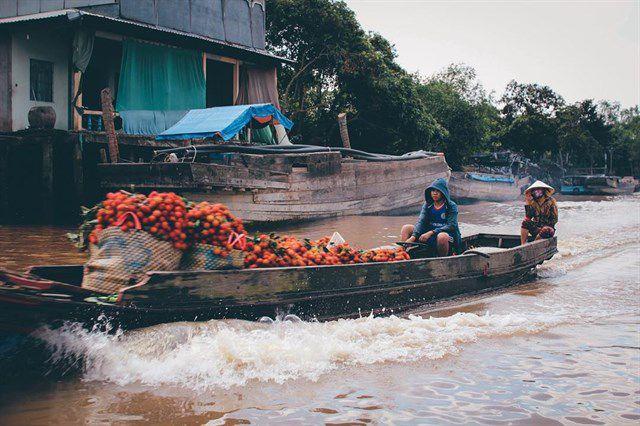 Thuyền chở trái cây tại chợ nổi Cái Bè