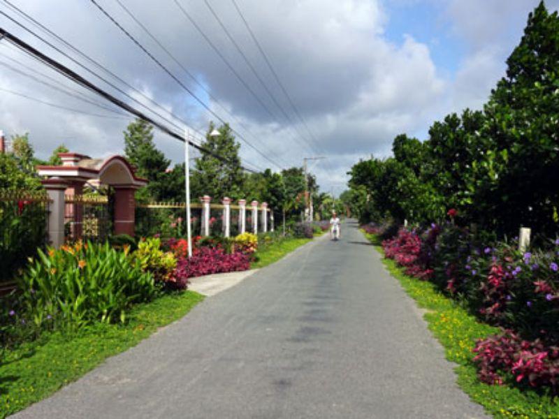 Con đường văn hóa tại Cẩm Sơn