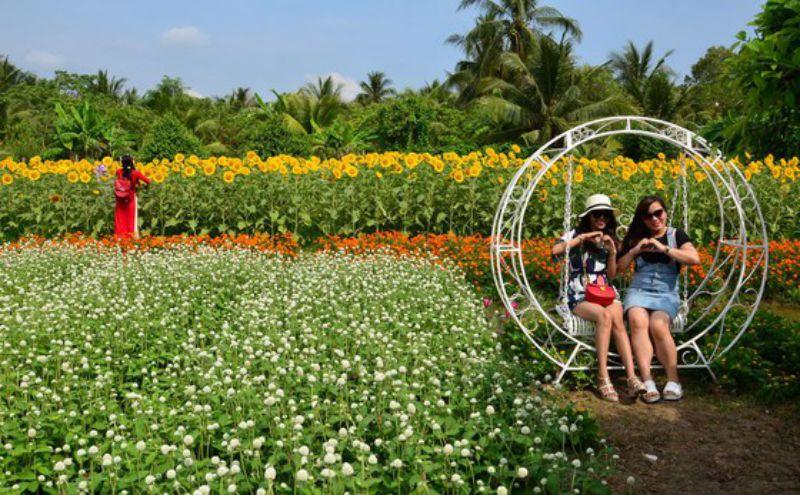 Mỗi dịp tết đến xuân về, vườn hoa Mãn Đình Hồng thu hút rất nhiều khách ghé thăm
