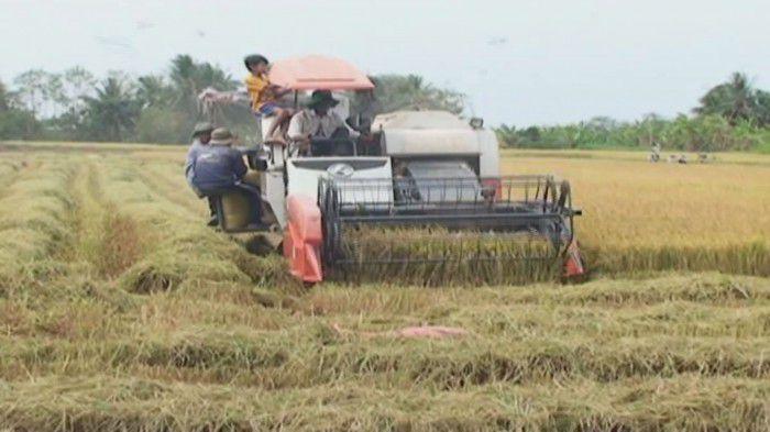 Diện mạo và đời sống nhân dân Thạnh Nhựt được cải thiện trong quá trình xây dựng xã nông thôn mới. Ảnh: Đoàn Vũ