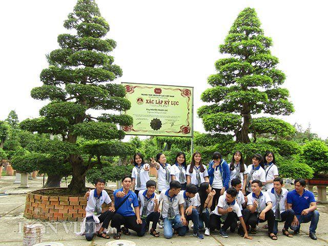 Hai cây me cổ nhất Việt Nam, 150 tuổi giá 6 tỷ có nguồn gốc từ Tiền Giang