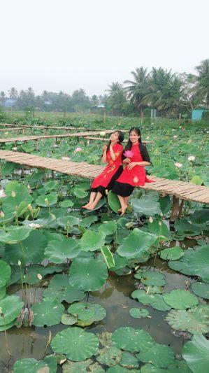 Vườn hoa Bách Nhật Hoa Viên - Châu Thành, Tiền Giang