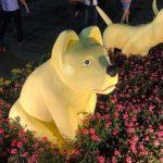 """Biểu tượng chó """"không giống cho"""" ở đường hoa Mỹ Tho: Đang tìm cách khắc phục"""