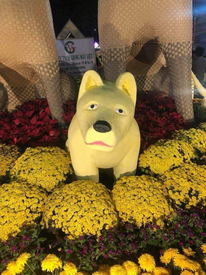 Đường hoa thành phố Mỹ Tho nổi tiếng khắp nước vì chú chó này
