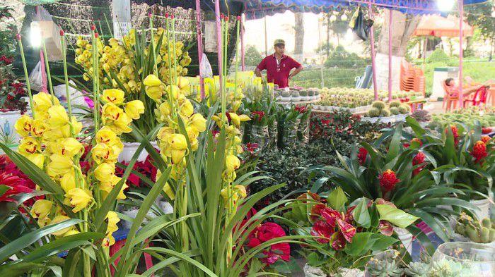 Náo nức chợ hoa xuân Mậu Tuất 2018 tại Tp. Mỹ Tho