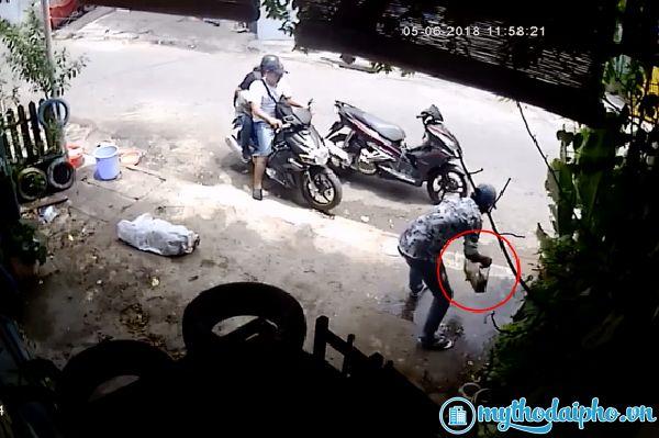 Clip nóng: 3 thanh niên đi xe tay ga cướp bể cá cảnh tại Mỹ Tho, Tiền Giang