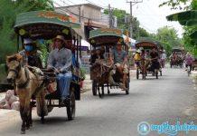 Dịch vụ xe ngựa du lịch gây bất an tại Tiền Giang