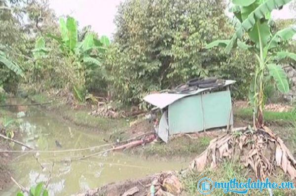 Máy bơm chập điện khiến 2 cha con tử vong ở Cai Lậy, Tiền Giang