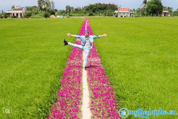 Cận cảnh con đường hoa mười giờ ở Gò Công xuất hiện kín mạng xã hội hôm nay