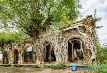 [Tiền Giang] đình Tân Đông – vẻ đẹp kì bí hơn 100 năm tuổi dưới gốc cây bồ đề