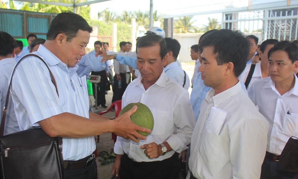 Lãnh đạo các xã phấn đấu ra mắt NTM giai đoạn 2018-2020 tham quan Tổ hợp tác Bưởi Da xanh ấp Bình Thành.