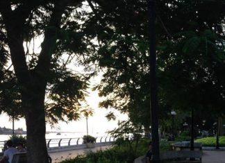 Ai tối tối thường ra đây bắt ếch nèP/s : Công viên Vườn Hoa Lạc Hồng ️️️️