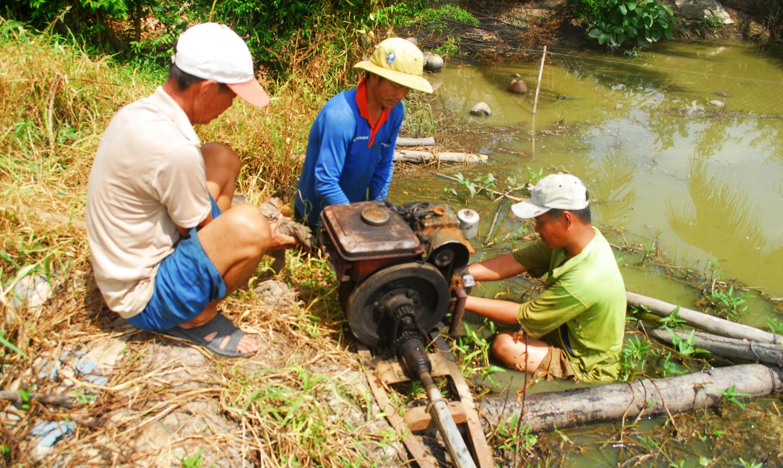Người dân ở các huyện, thị phía Tây đặt máy để bơm hút nước trên đồng.