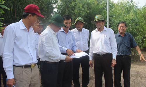 Thường trực UBND tỉnh đến khảo sát tại khu đất công tại xã Mỹ Phước, huyện Tân Phước.