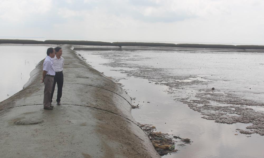 """Dự án """"Gây bồi tạo bãi, trồng cây ngập mặn bảo vệ đê biển Gò Công""""."""