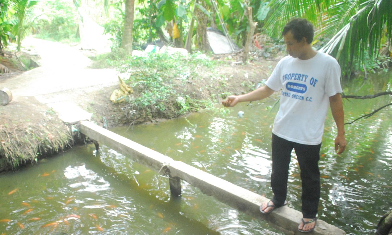 Anh Vinh đang cho cá ăn bằng trùn quế.