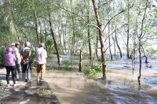 Tiền Giang: Tìm thấy thi thể một nạn nhân trong vụ chìm sà lan trên sông Tiền