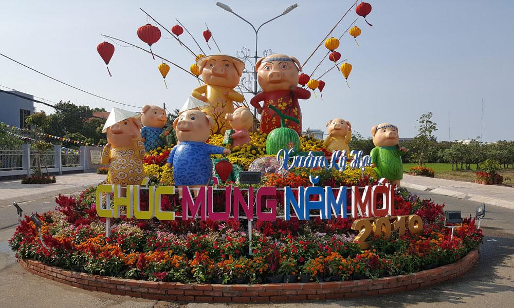 Gia đình heo ở Đường hoa huyện Gò Công Đông.