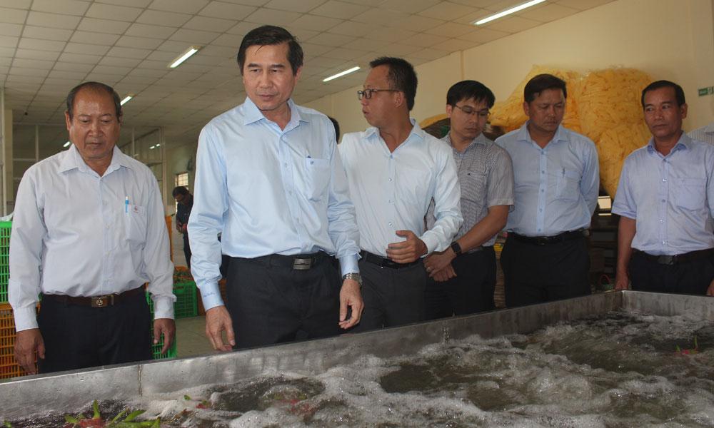 Chủ tịch UBND tỉnh Lê Văn Hưởng thăm HTX Thanh long Mỹ Tịnh An.