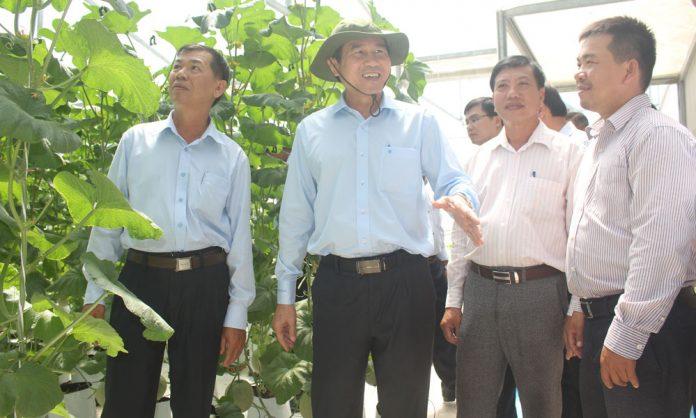Chủ tịch UBND tỉnh Lê Văn Hưởng thăm HTX Sản xuất Thương mại - Dịch vụ nông nghiệp sạch Mỹ Phong.