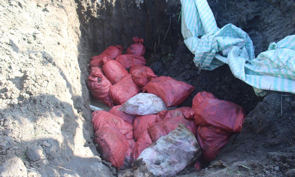 Hiện trường vụ chôn hơn 1,5 tấn thuốc BVTV trái phép.