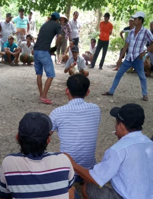 Tiền Giang: Người dân bức xúc một trường đá gà hơn 3 năm chưa thể triệt phá