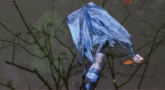 Sông rạch ở miền Tây Nam bộ đang bị ô nhiễm bởi đủ loại rác thải nhựa