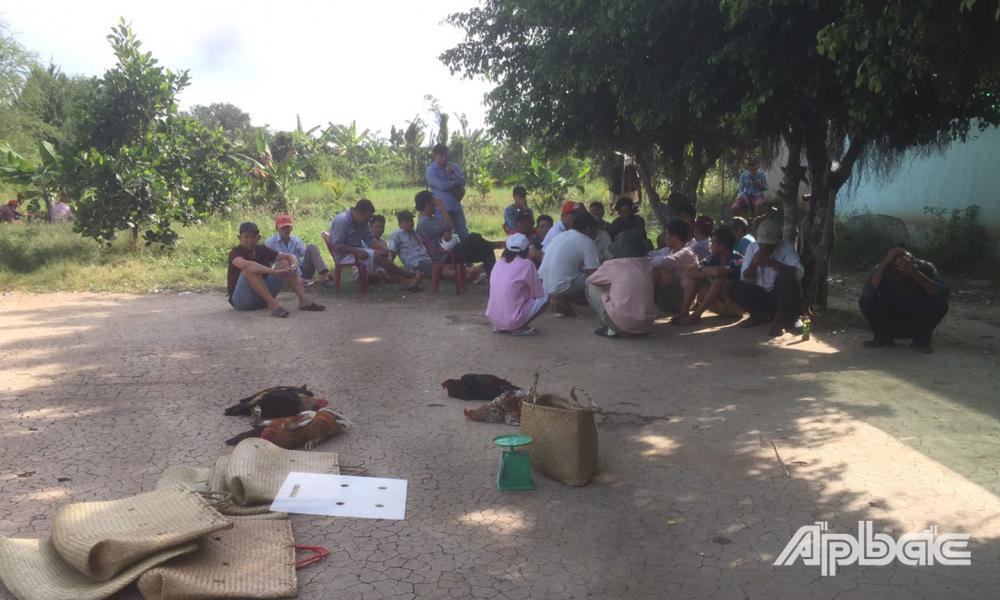 Các đối tượng tham gia đá gà bị bắt giữ.